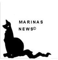 logo-marinasnews